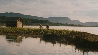 Obrázok k filmu Kukuričný ostrov (2014)