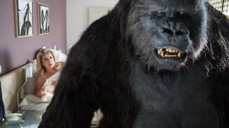 Obrázok k filmu ZBRUSU NOVÝ ZÁKON (2015)